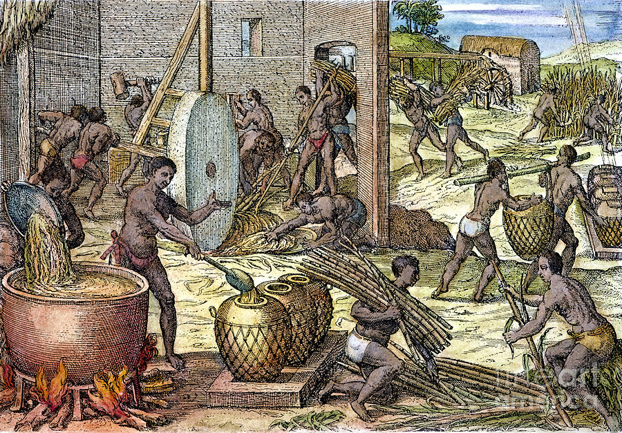 slavery and plantation in trinidad and tobago Trinidad was settled mainly by  the island's population grew slowly and by the time slavery was  emigration from trinidad and tobago has been.