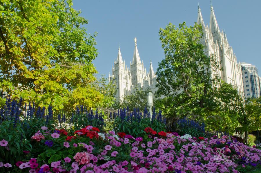 Temple Photograph - Slc Temple Flowers by La Rae  Roberts