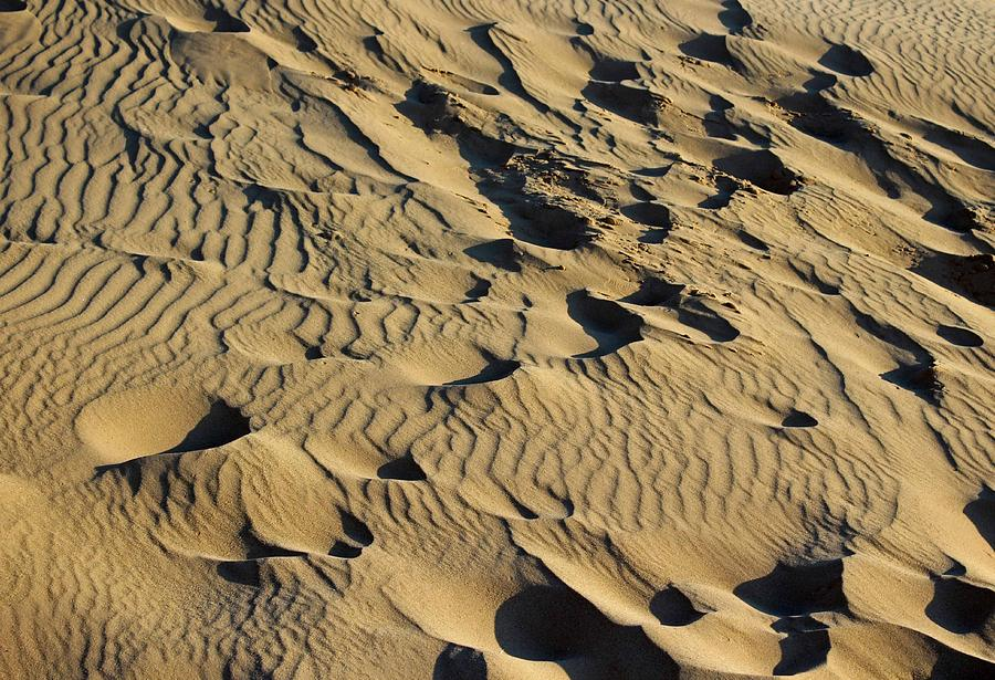 Sleeping Bear Dunes Sand Photograph