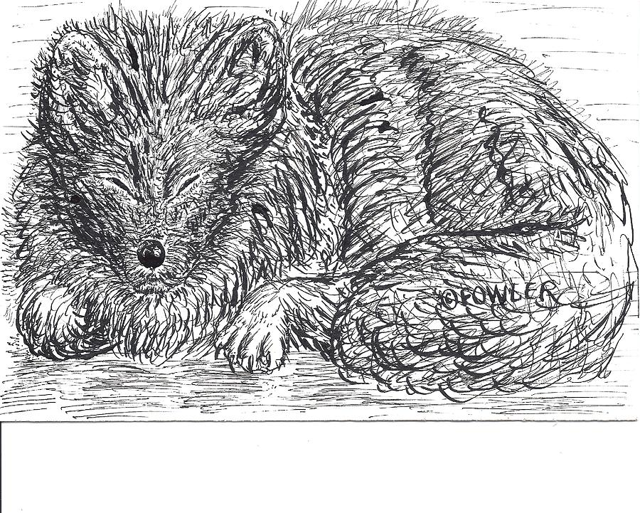 Sleepy Fox Drawing  - Sleepy Fox Fine Art Print