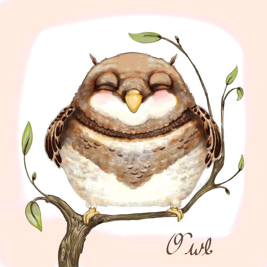 Sleepy Owl Digital Art