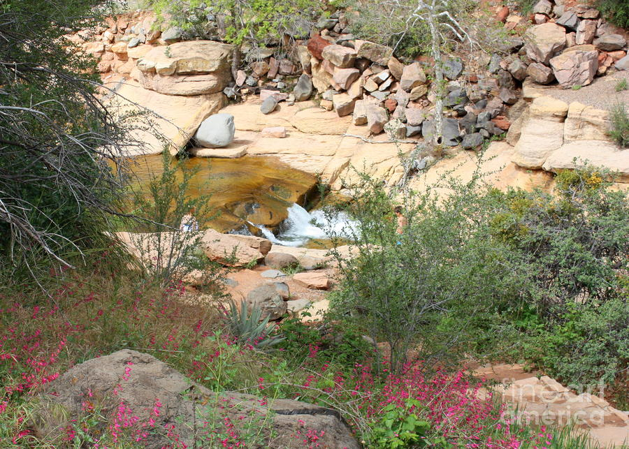 Slide Rock With Pink Wildflowers Photograph