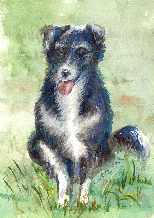 border fine arts price guide border collie