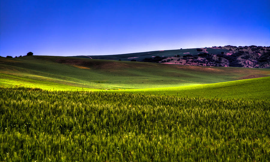 Sliver Of Sunlight On The Palouse Hills Photograph