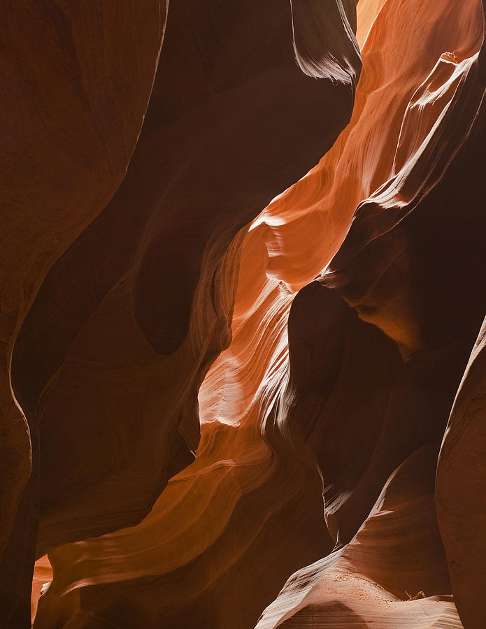 Slot Canyon Photograph  - Slot Canyon Fine Art Print