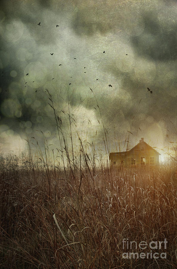 Small Abandoned Farm House With Storm Clouds In Field Photograph