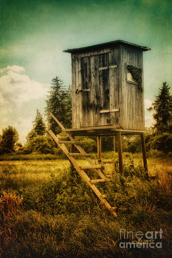 Small Cabin With Legs Photograph  - Small Cabin With Legs Fine Art Print