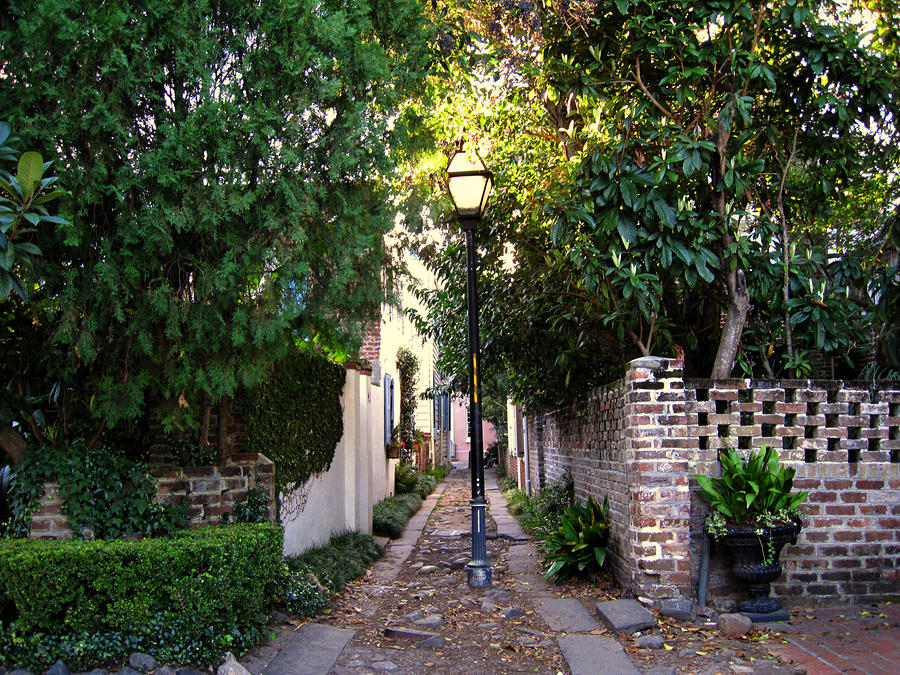 Small Lane In Charleston Photograph  - Small Lane In Charleston Fine Art Print