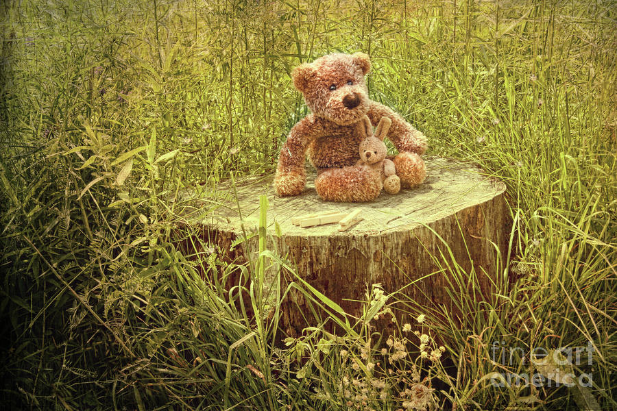 Small Little Bears On Old Wooden Stump  Photograph