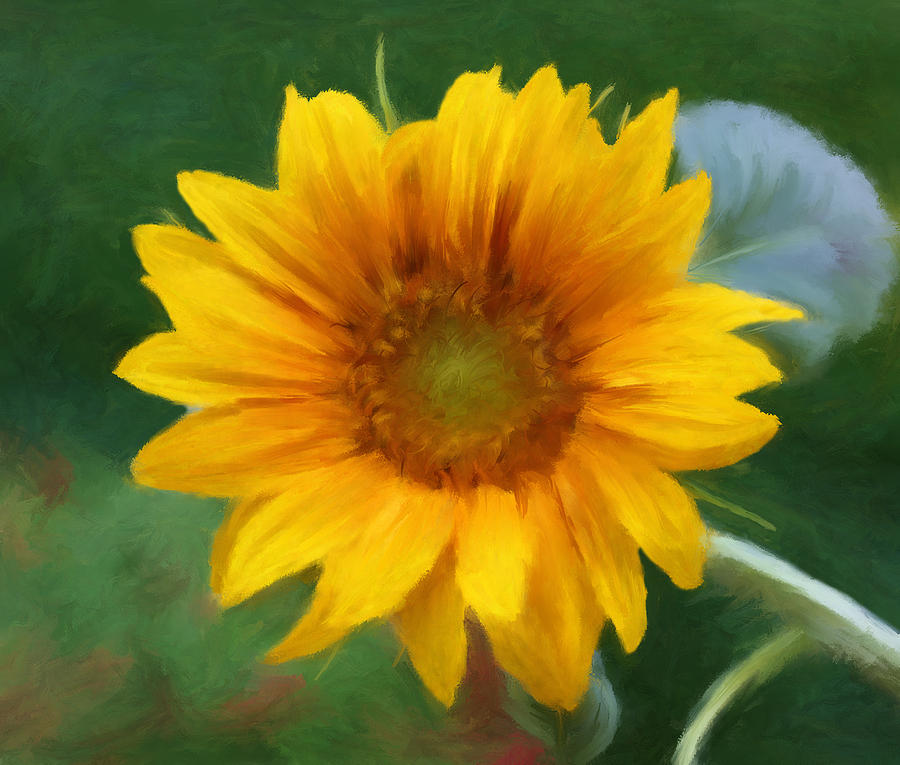 Small Sunflower Mixed Media  - Small Sunflower Fine Art Print