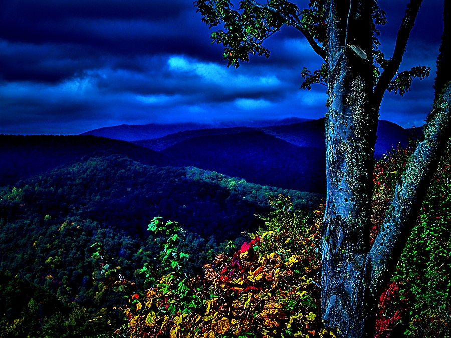 Smokey Mountain Still Life Photograph  - Smokey Mountain Still Life Fine Art Print