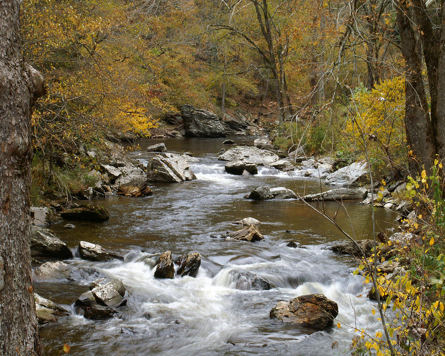stream in the mountains - photo #11