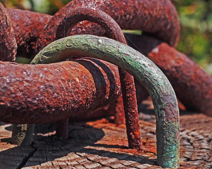 Snaking Rust  Photograph