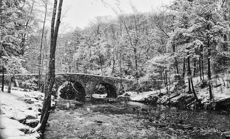 Snow Along The Wissahickon Creek Photograph