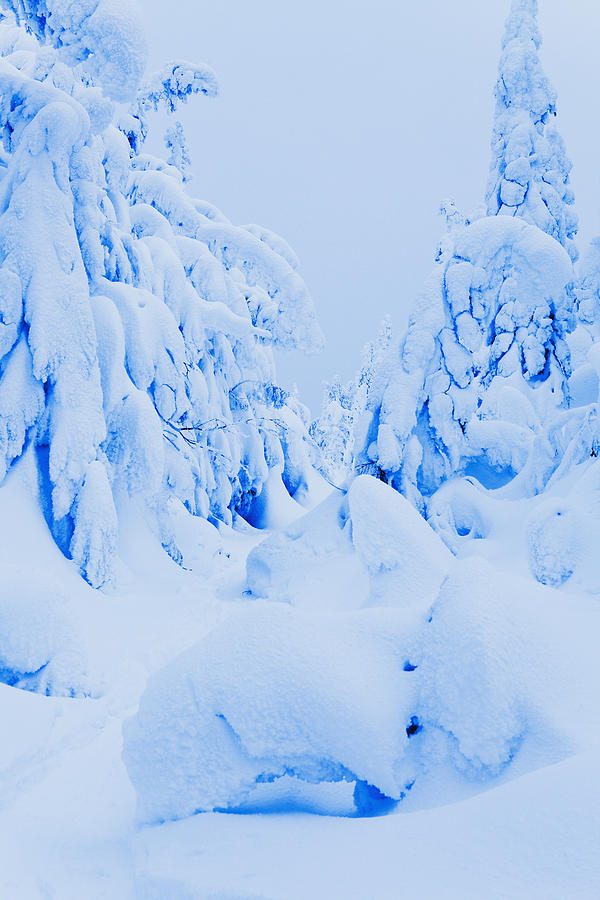 Attraction Photograph - Snow-covered To Vallee Des Fantomes by Yves Marcoux