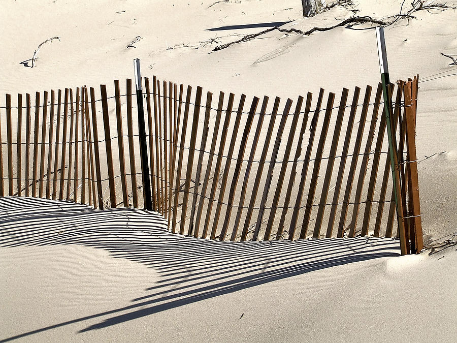 Snow Fence Shadows Photograph