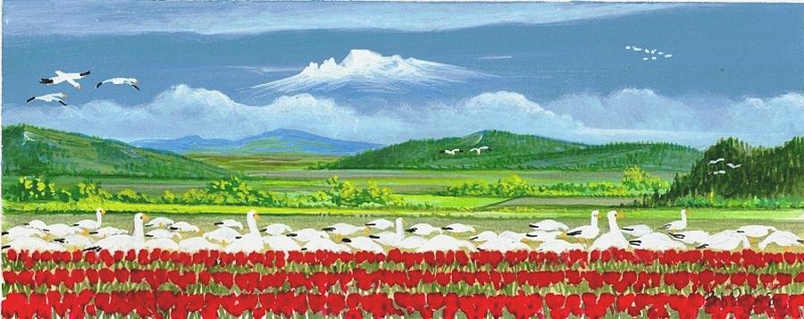 Snow Geese And Tulips Painting  - Snow Geese And Tulips Fine Art Print
