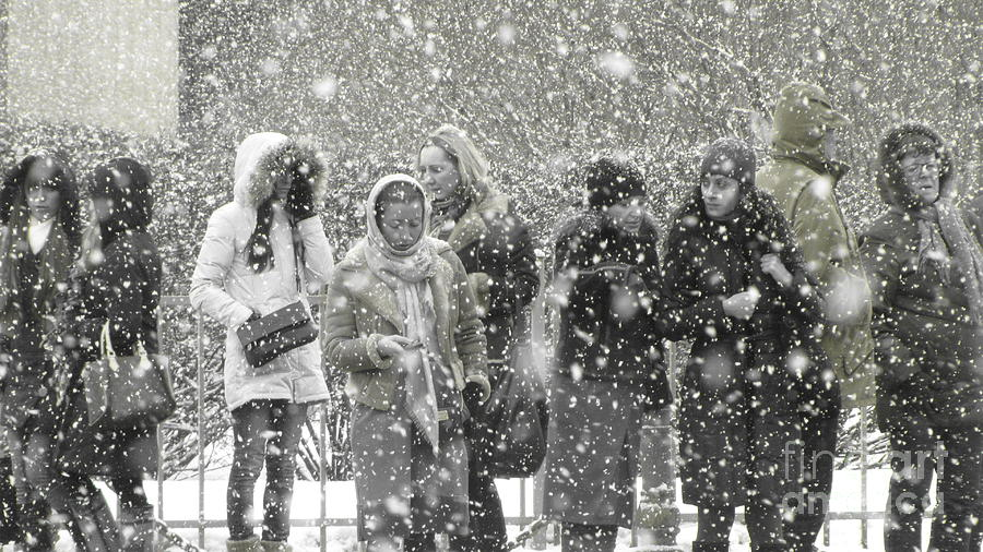 Snow In City Photograph