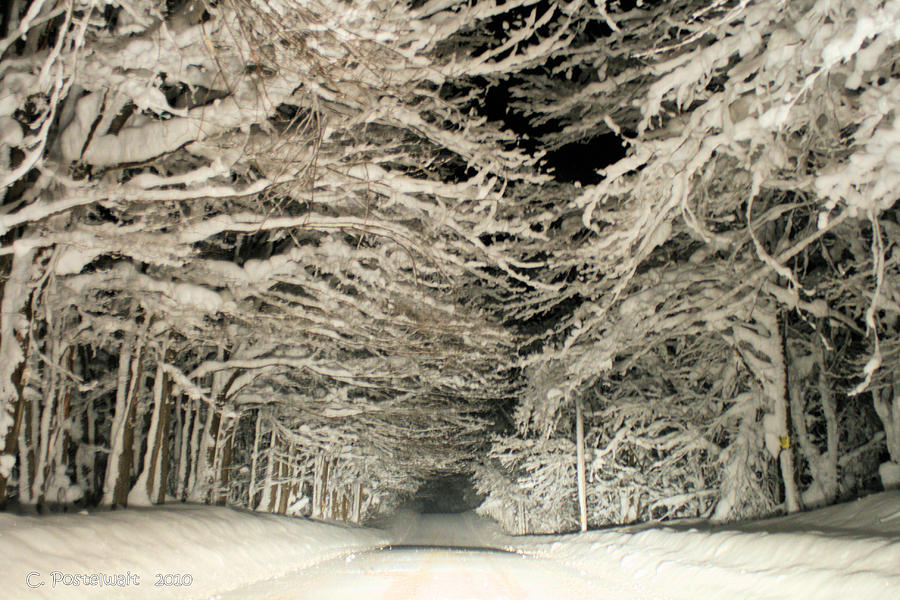 Snow Tunnel At Night Photograph