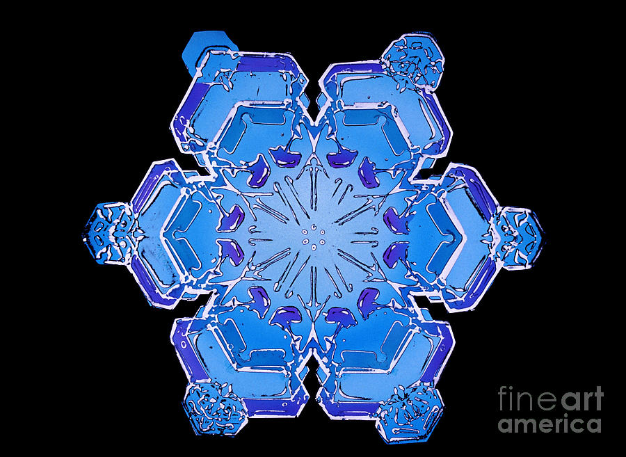 Snowflake From A Resin Cast Photograph  - Snowflake From A Resin Cast Fine Art Print