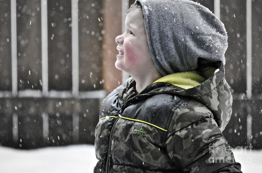 Snow Photograph - Snowflake Thoughts by Gwyn Newcombe