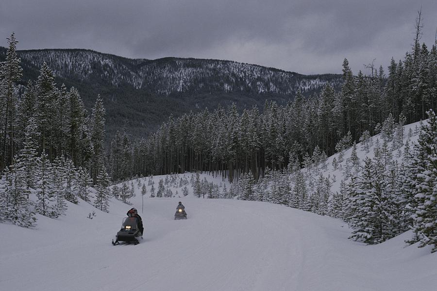 Snowmobilers In Yellowstone National Photograph