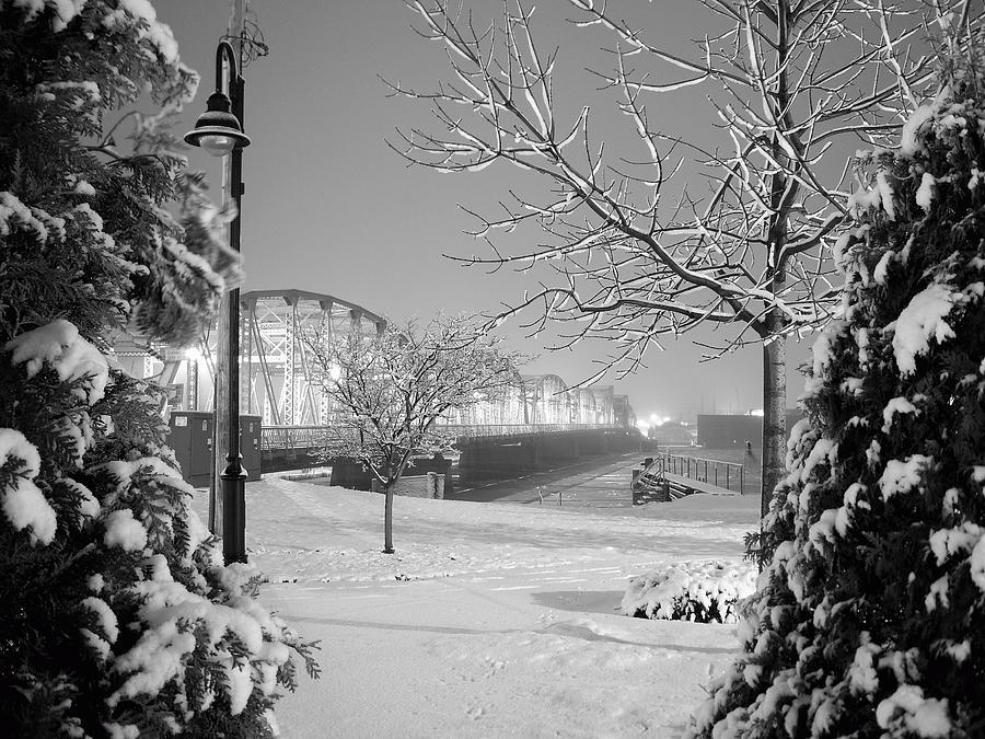 Snowy Bridge With Trees Photograph