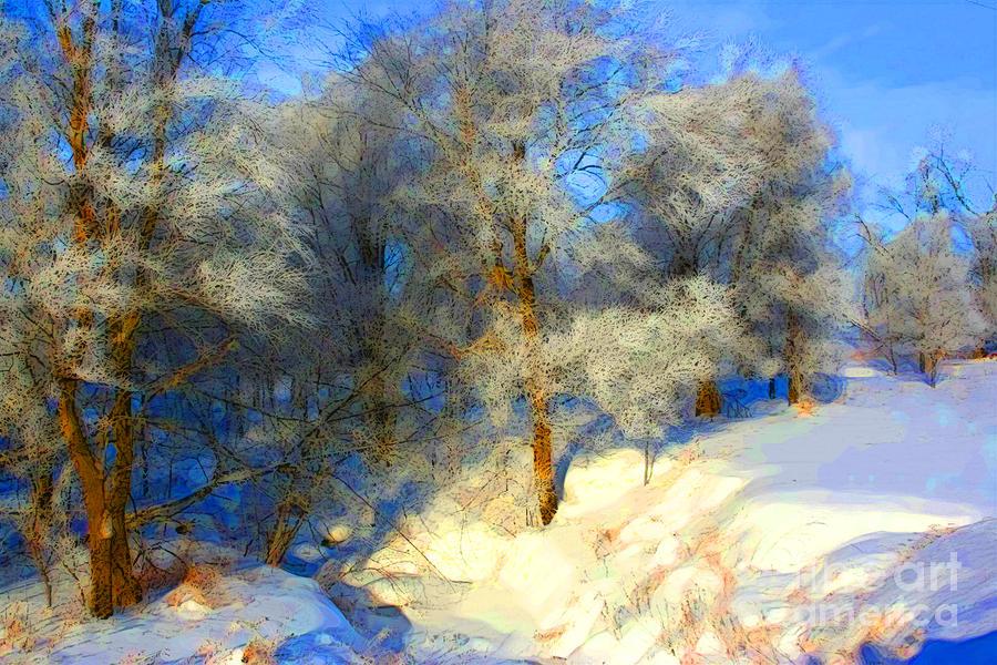 Snowy Creek Etc Photograph