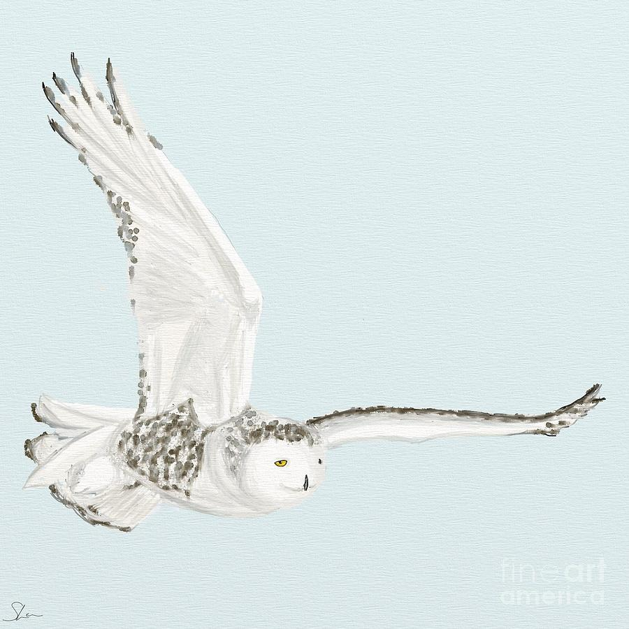 Snowy owl in flight at night - photo#15