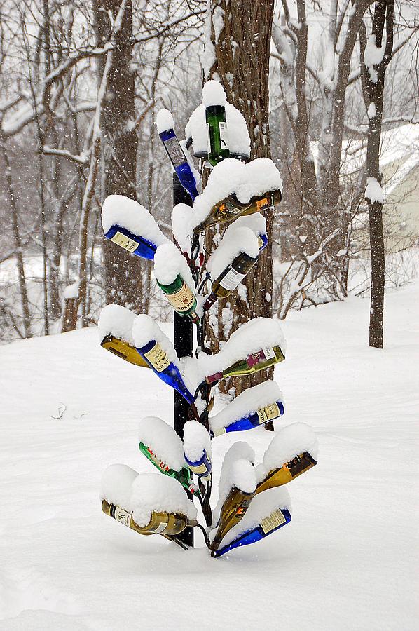 Snowy Wine Bottle Sculpture Photograph