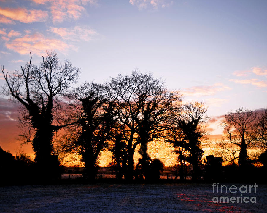 Snowy Winter Sunset Photograph  - Snowy Winter Sunset Fine Art Print