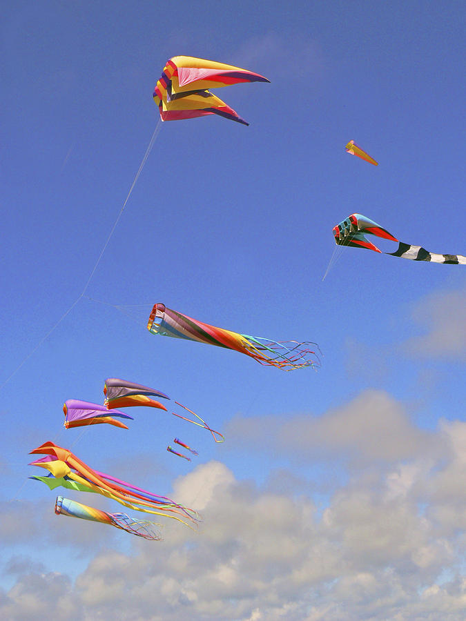 Kites Photograph - Soaring With The Clouds by Pamela Patch