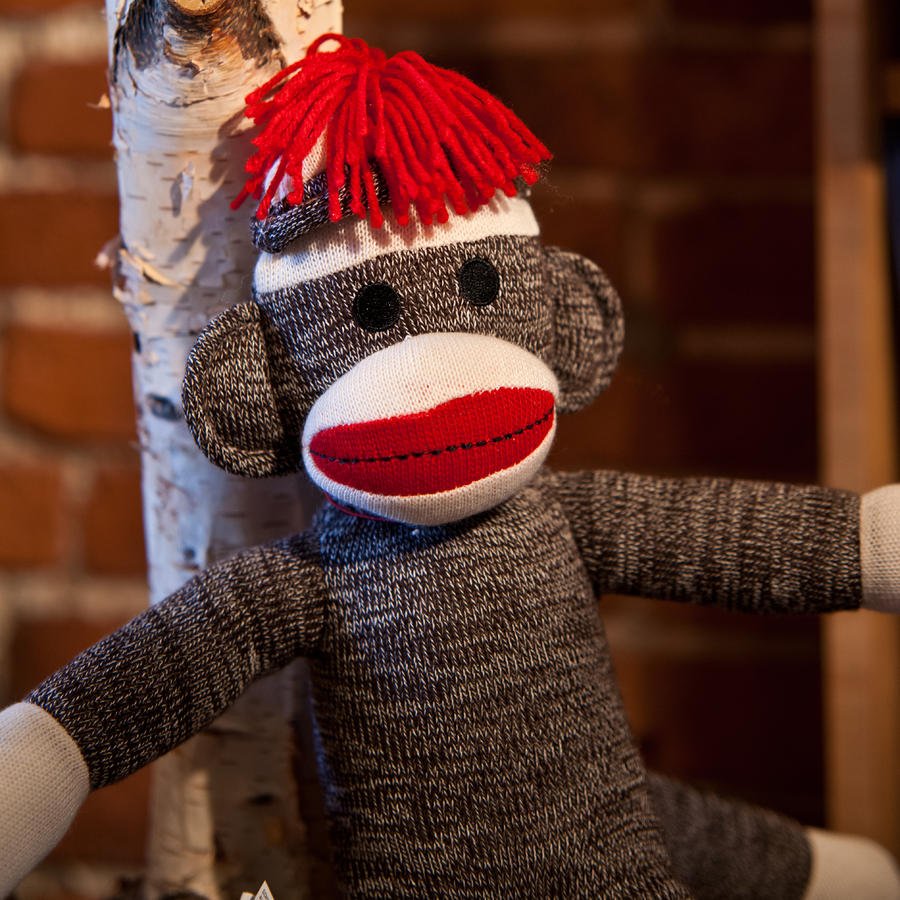 Sock Monkey Photograph