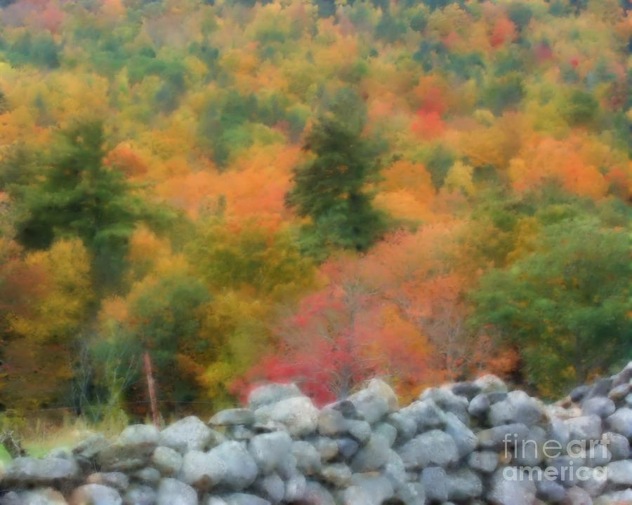 Soft Autumn Colors By Smilin Eyes Treasures