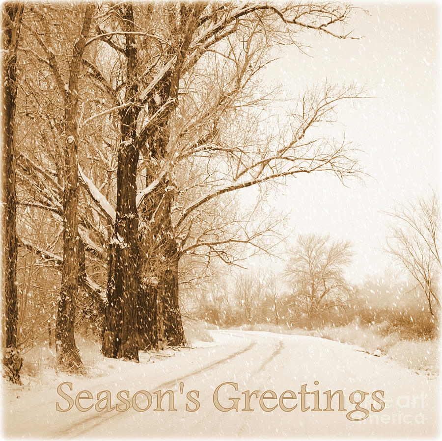 Soft Sepia Seasons Greetings Photograph  - Soft Sepia Seasons Greetings Fine Art Print