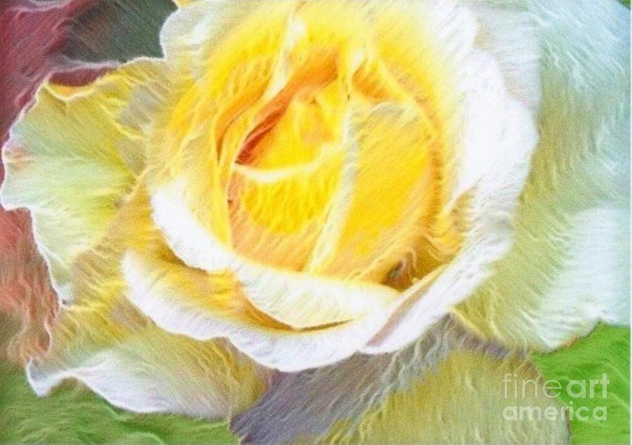 Softly Blooming Rose Digital Art