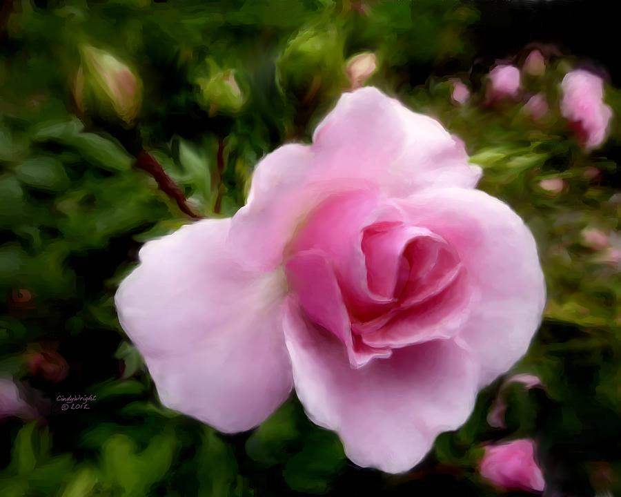 Softly Romantic Digital Art