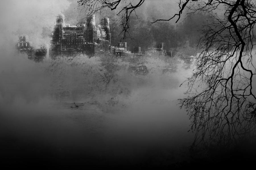 Solitude In Central Park Photograph