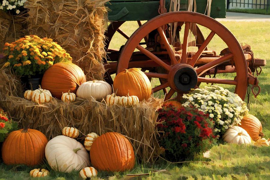 Southern Harvestime Display Photograph