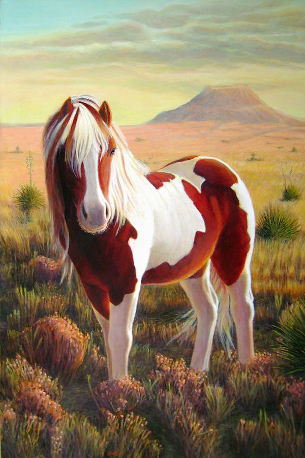 Southwest Wild Pinto Pony Painting