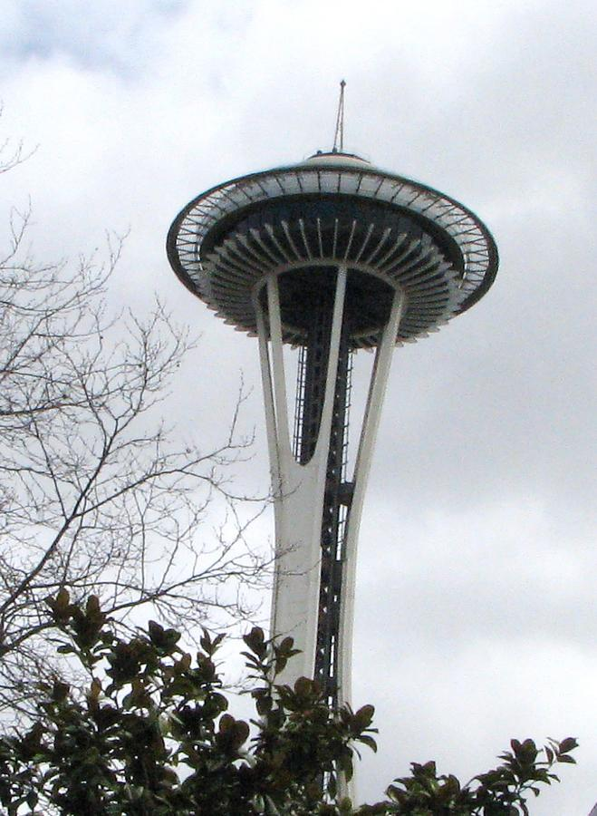 Space Needle In Seattle Photograph
