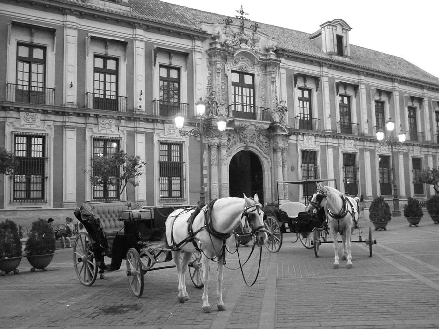 Horse Cart Black And White Spain Photograph - Spain by Matt Wilton
