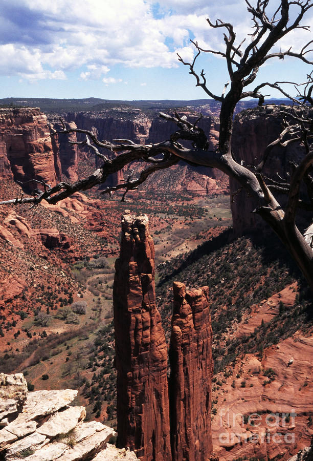 Spider Rock Photograph