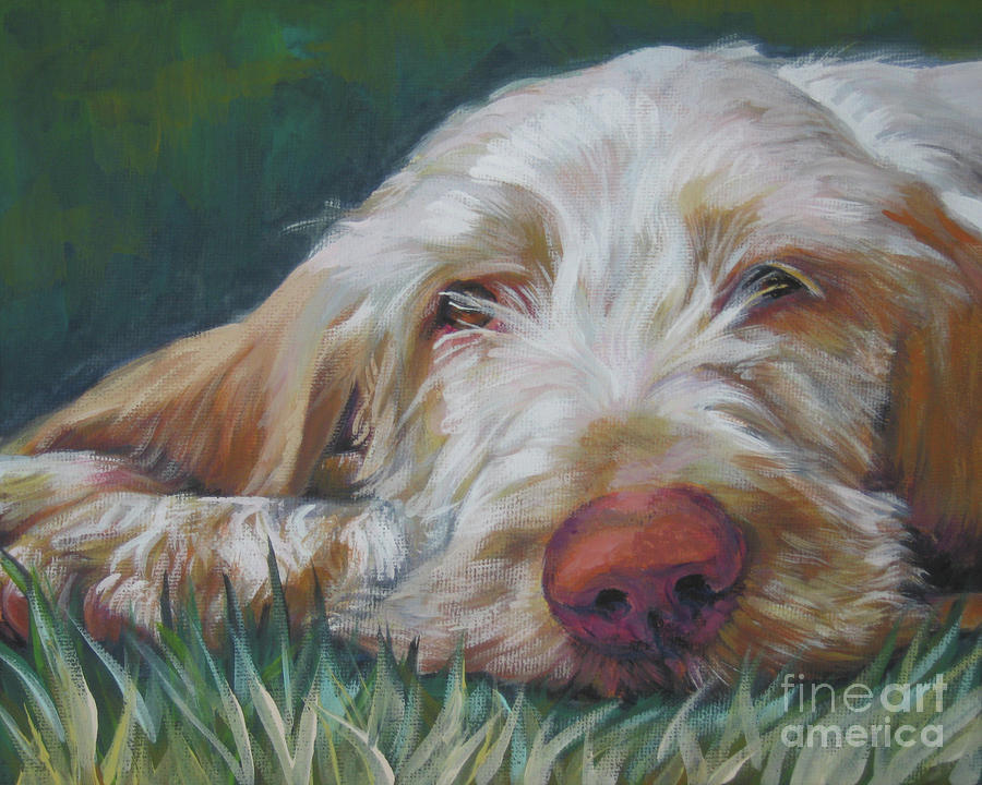 Spinone Italiano Orange Painting  - Spinone Italiano Orange Fine Art Print