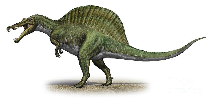 Spinosaurus Aegyptiacus, A Prehistoric Digital Art