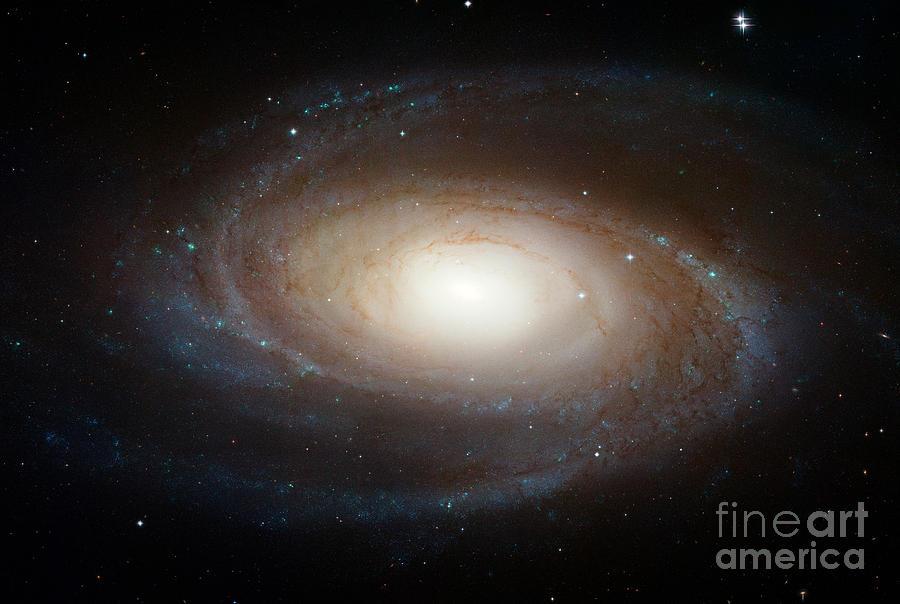 M81 Photograph - Spiral Galaxy M81 by Nasa