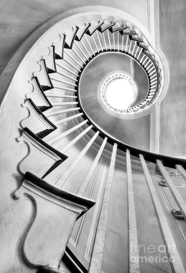 Spiral Staircase Lowndes Grove  Photograph