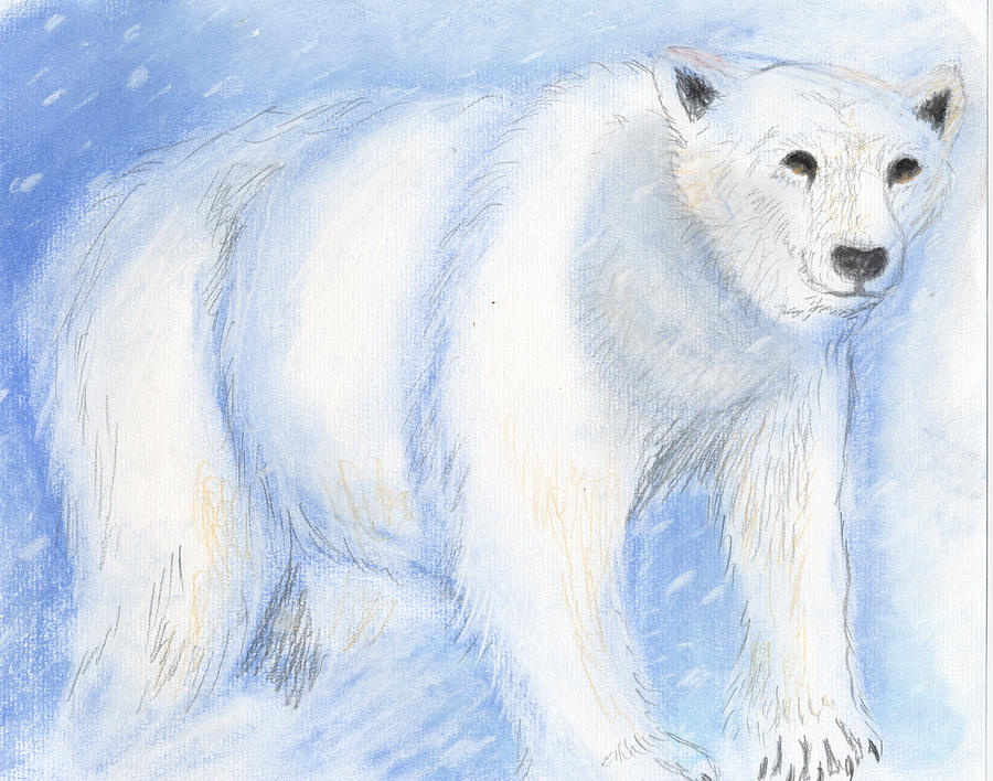 Spirit Bear Painting  - Spirit Bear Fine Art Print