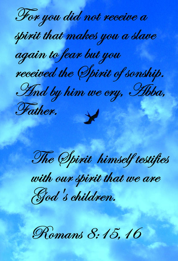 Spirit Of Sonship Photograph