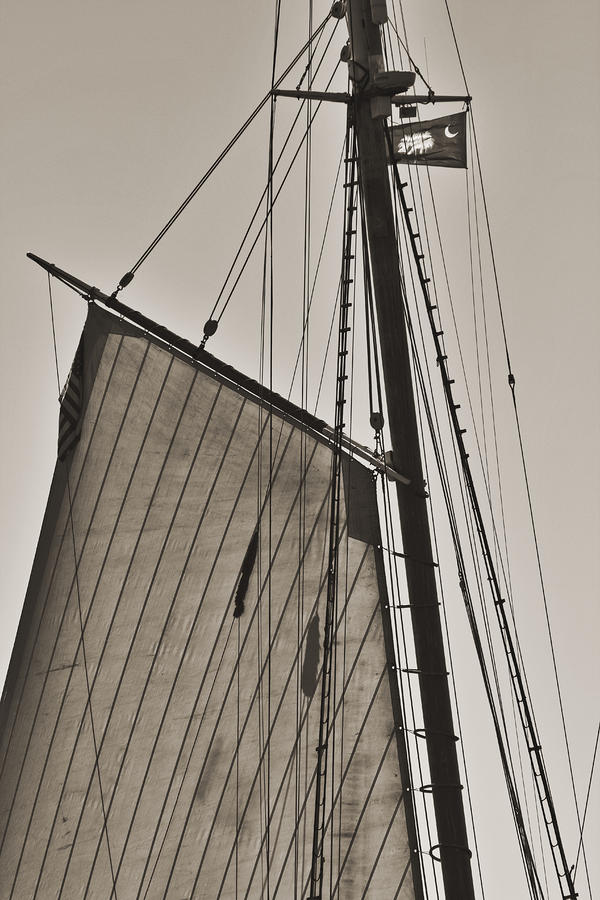 Spirit Of South Carolina Schooner Sailboat Sail Photograph  - Spirit Of South Carolina Schooner Sailboat Sail Fine Art Print